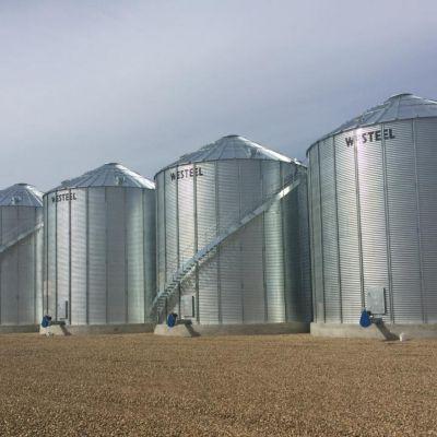 Large Grain Bins